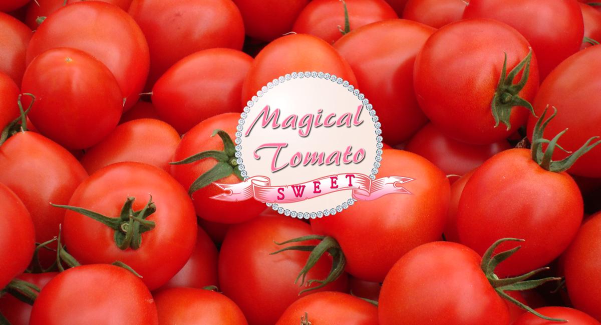 まほうのトマト・ロゴ